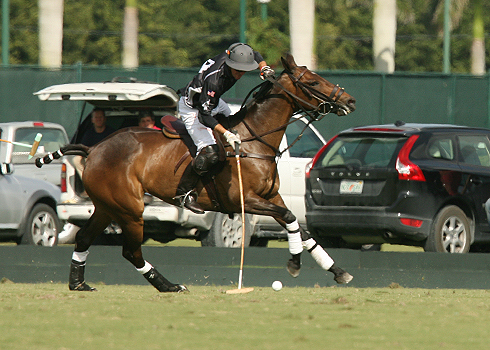 polo magazine international polo club alex pacheco polo photos audi polo team 1