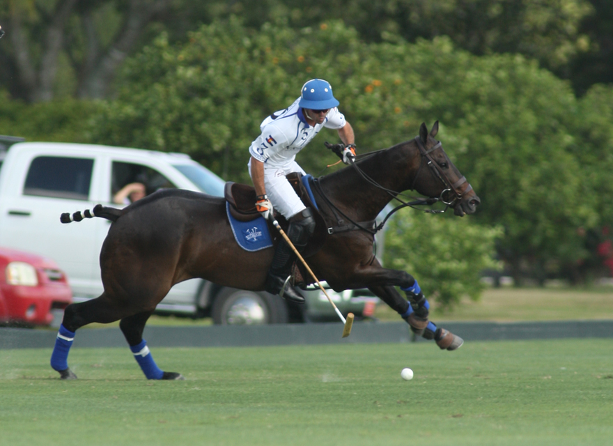 Photos-Valiente vs. Lechuza