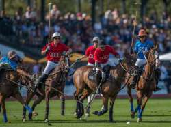 2017 Greenwich Polo Season