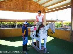Taking a Swing at Polo: My First Lesson at Palm City Polo Club