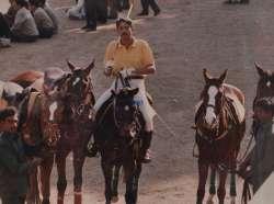 Aspen Riding and Polo Academy India